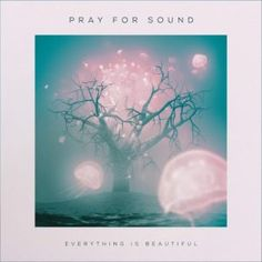 Pray For Sound - Everything Is Beautiful - 4/5 Sterne