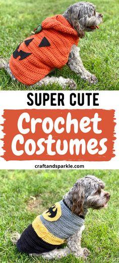 Small Dog Halloween Costumes, Crochet Halloween Costume, Halloween Costume Patterns, Crochet Costumes, Halloween Crochet Patterns, Diy Dog Costumes, Halloween Diy, Crochet Pet, Crochet Humor