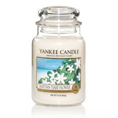 Tahitian Tiaré Flower - What's New - Yankee Candle