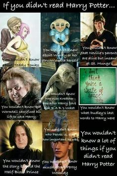 If you didn't read Harry Potter ...