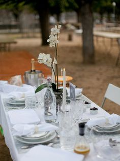 bringing an orchid is a great idea for table decoration. from le diner en blanc - san francisco