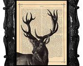 Deer Print Deer Vintage Book Print Vintage Book Page Upcycled Dictionary Deer Stag Print. exactly what I'm looking for!