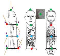 Ideas and methods to treat diseases by Su-jok medicine Acupressure Points Chart, Acupressure Therapy, Acupressure Treatment, Acupuncture Points, Reiki Therapy, Massage Therapy, Self Treatment, Cancer Treatment, Good Massage