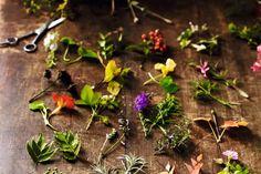 GILLAdvent-281337 v2 Make An Advent Calendar, Floral Theme, Dried Flowers, Christmas Cards, Succulents, Herbs, Plants, Calendar Ideas, Christmas E Cards