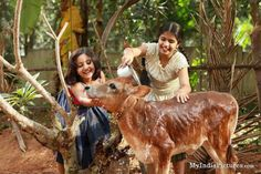 Girls Washing Cow Cool : India Pictures - Funny India Pics & Photos