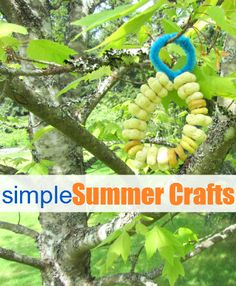 bird feeder (simple summer crafts for kids)