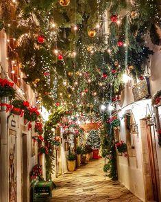 28 Days to Christmas 🎄 - Puglia, Italy 🇮🇹 📸 by: [IG] Christmas Mood, All Things Christmas, Italy Christmas, Merry Christmas, Xmas, Christmas Lights Show, German Christmas Markets, Country Christmas, Outdoor Christmas