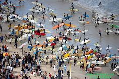 Guinness World Record Attempt 2009 - (Arkimages) - Surfers at Muizenberg heading out to attempt Most surfers on a single wave Nordic Walking, Guinness World, World Records, Surfers, Bird Watching, Cape Town, Canoe, South Africa, Sailing