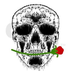 Spooky Fun Rose in Teeth White Skull Graphic for Halloween. Printed in USA. http://www.cafepress.com/mf/14279956/rose-in-teeth-white-skull_magnets?productId=318236691?aid=419378
