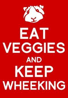 Eat Veggies and Keep Wheeking! #guineapig #cavy