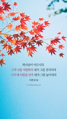 Bible Quotes, Bible Verses, Blessing Words, Korean Words Learning, Korean Quotes, Christian Wallpaper, Give Thanks, Word Of God, Faith