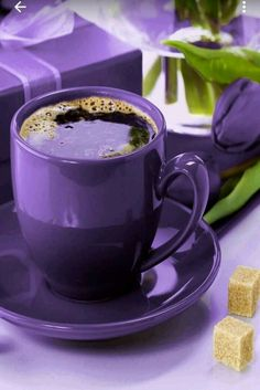 Purple and Green / Pantone's Color of the year 2018 Ultra Violet The Purple, Purple Stuff, Purple Lilac, All Things Purple, Shades Of Purple, Coffee Love, Coffee Break, Morning Coffee, Coffee Gif