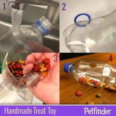 Homemade pet toy soda bottle treat dispenser