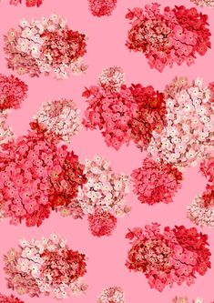 vintage floral hydrangea pattern by laura redburn...unique and beautiful..
