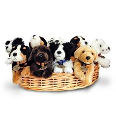 KEELS - Assorted Plush 25cm Laying Dogs (Blind-Box*) http://www.kalahari.com/Toys/KEELS-Assorted-Plush-25cm-Laying-Dogs-Blind-Box-_p_47352323