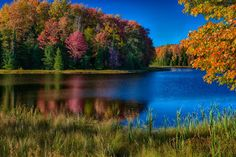 Fall Colors On Mable Lake