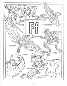 Free nature coloring pages! for ages 12 and up! Download this ...