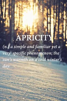 APRICITY  (n.) a simple and familiar yet a very specific phenomenon- the sun's warmth on a cold winter's day.