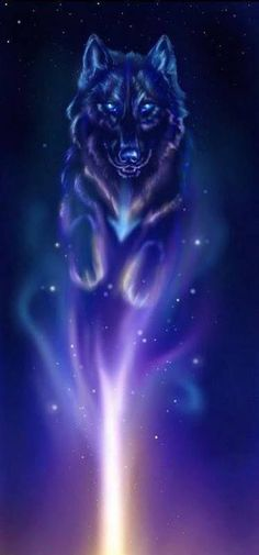 Spirit Wolf Photo: This Photo was uploaded by emmiedownunder. Find other Spirit Wolf pictures and photos or upload your own with Photobucket free image . Anime Wolf, Beautiful Wolves, Animals Beautiful, Galaxy Wolf, Wolf Artwork, Fantasy Wolf, Fantasy Art, Wolf Spirit Animal, Wolf Wallpaper