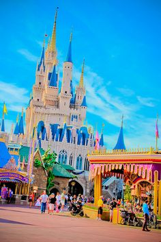 disney world pictures (Search results for: Castle)