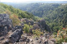 PR Divoká Šárka - Nebušická skála2 - Divoká Šárka - Wikimedia Commons