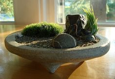 ZEN Garden Concrete Planter with Live Moss and Air Plant. $24.99
