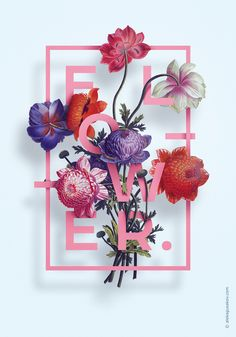 Aleksander Gusakov, Ukrainian graphic designer, produced a series of decorative posters highlighting colorful floral bouquets and bold text. Gusakov wove the letters between leaves and petals, and it gives the illusion that his compositions are 3D.