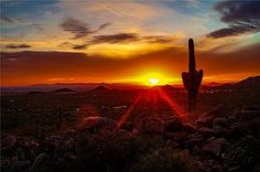Sunset in Usery Mountain Park in Mesa, AZ~taken by Casey Stanford