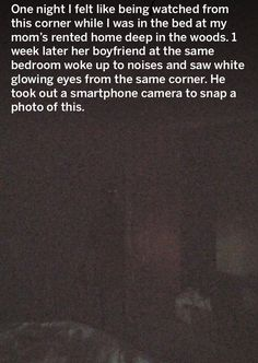 Ghost Pictures, Creepy Pictures, Ghost Pics, Weird Facts, That's Weird, Real Ghost Stories, Ghost Sightings, Facts About People, Shadow People
