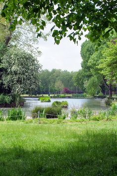 Walk along the Regent's Canal to get to Victoria Park in 30 minutes from 52 Redmans Road or you can take the bus 339.