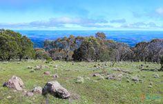 Mount Canobolas - Orange, NSW, Australia