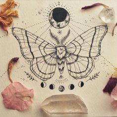 Moth drawing in pen Kunst Tattoos, Bild Tattoos, Tattoo Drawings, Body Art Tattoos, New Tattoos, Tatoos, Moth Drawing, Butterfly Drawing, Drawing Art