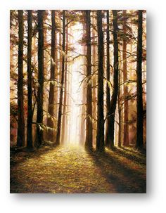 Serenity By Child Prodigy Artist Akiane Kramarik, wooded forest sun rays prophetic art painting. Akiane Kramarik Paintings, Heaven Is Real, Child Prodigy, Prophetic Art, Religious Art, Painting Inspiration, Serenity, Art Gallery, Beautiful Pictures