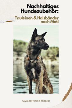 In unserer Wiener Manufaktur fertigen wir auf Maß deine Wunschleine und ein individuelles Halsband für deinen Hund. Nachhaltige Materialien   Handarbeit aus Österreich   Öko Hundeausstattung   Individuelle Halsbänder Rat, Husky, Dogs, Animals, Bunnies, Cats, Sustainable Living, Dog Care, Dog Leash
