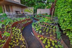 aménagement jardin potager sur pente avec terrasses en acier corten
