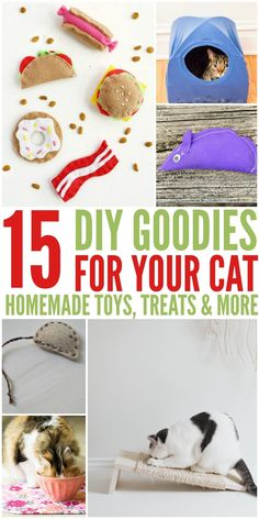 DIY Goodies for Your Cats Looking for some awesome homemade cat toys & treats? Check out our 15 DIY Goodies for Your Cats Round up here!Looking for some awesome homemade cat toys & treats? Check out our 15 DIY Goodies for Your Cats Round up here! Homemade Cat Toys, Diy Cat Toys, Dog Toys, Toys For Cats, Cat Hacks, Ideal Toys, Cat Crafts, Diy Stuffed Animals, Crazy Cats