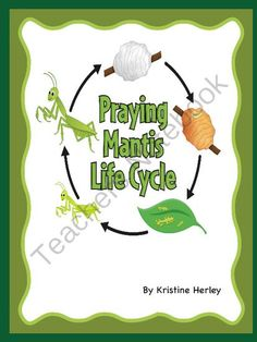 Praying Mantis Life Cycle from Kristine's Classroom Creations on TeachersNotebook.com -  (12 pages)  - Includes nine different life cycle activities for a praying mantis.