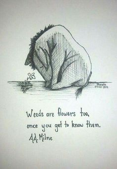 Did you know that Eeyore commits suicide in Winnie the Pooh!?!! I only found out today like, what the heck man. Too depressing :(