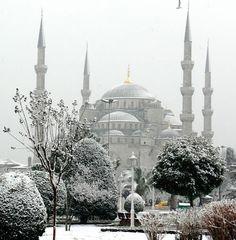 Lady Dragon - Стамбул