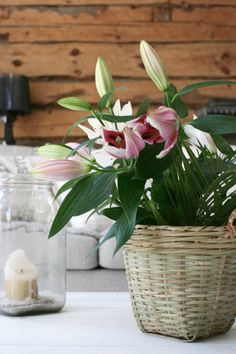 Tine K. home details / Kukat tine k.n korissa. Pink Lilys are beautiful