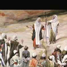 The Israelites spoke against God and Moses in the desert ...
