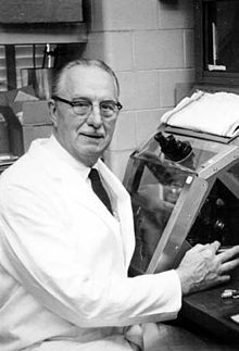 George Otto Gey (July 6, 1899 – November 8, 1970) was the scientist who propagated the HeLa cell line.