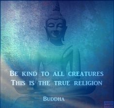 Be kind to all creatures. This is the true religion. Buddha Zen, Buddha Buddhism, Buddha Quote, Buddhist Quotes, True Religion, Deep Thoughts, Life Lessons, Wise Words, Affirmations