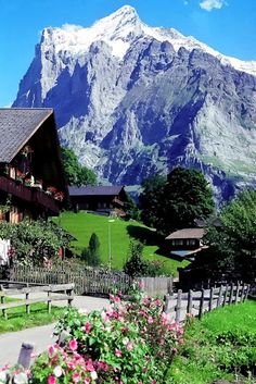 Spring in Grindelwald, Switzerland. Grindelwald village is located ft. above sea level in the Bernese Alps. Wonderful Places, Great Places, Places To See, Beautiful Places, Dream Vacations, Vacation Spots, Places Around The World, Around The Worlds, Places To Travel