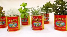 El Pato Mexican Cans Small  FREE Shipping from InNonnaKitchen.com
