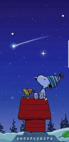Snoopy & Woodstock looking up stars