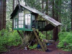 magical little treehouse!