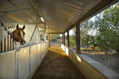 open air stable