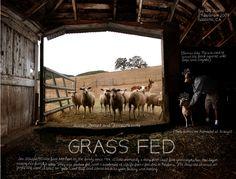 """#1 """"Grass Fed"""" by Douglas Gayeton, via 500px"""