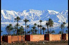 Agdal Gardens, Marrakech